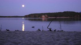 Romantic full moon night at lake, calm water level with moon rays. Ducks swiming on lake
