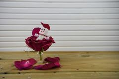 Romantic fun winter season photography image with red rose flower in a small jar and marshmallow snowman inside Royalty Free Stock Photography