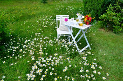 Romantic garden Picnic Royalty Free Stock Images