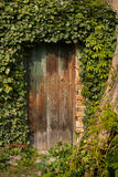 Romantic garden wooden door richly planted around Royalty Free Stock Images