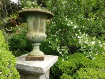 Romantic gardens XIX century. With carved vase and boxwood hedges Stock Photos