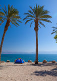 A romantic getaway on the beach. Under the palm trees, the perfect place Royalty Free Stock Image