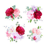 Romantic gift bouquets in purple, pink, burgundy red and white. Tones. Peony, alstroemeria lily, carnation, rose, violet bell flower, orchid, eucaliptus. All stock illustration