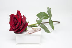 Romantic Gift. Flowers and Jewelry. With Love Stock Photos