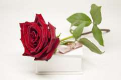 Romantic Gift. With Love Stock Photography