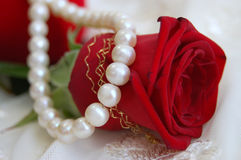 Romantic Gifts. Red rose and pearl necklace on lace Royalty Free Stock Images