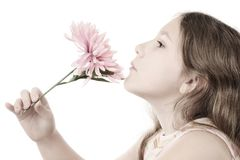 Romantic girl with pink flower. Pastel portrait of romantic girl with pink flower isolated on white background Royalty Free Stock Photo