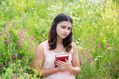 Romantic girl reading a book on nature Stock Photography