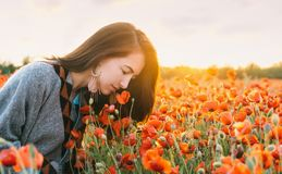 Romantic girl smelling a poppy flower in field. Romantic beautiful brunette young woman smelling a red poppy in flower meadow in summer sunset stock images