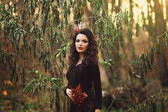Romantic girl stands in the park Royalty Free Stock Photo