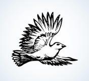 Romantic grace volant dove fly on white sky background vector illustration