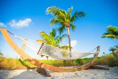 Romantic hammock in the shadow of palm on tropical Royalty Free Stock Images