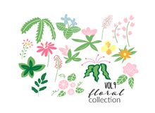Wild flower meadow illustration.vector floral elements collection. royalty free illustration