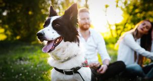 Romantic happy couple in love enjoying their time with pets in nature Royalty Free Stock Images