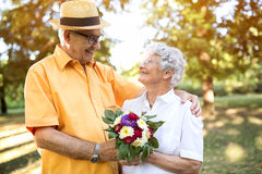 Romantic happy senior couple in park Stock Image