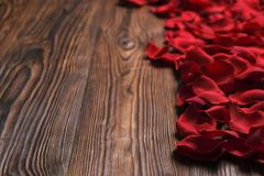 Beautiful bright red rose petals on wooden background. Happy valentines day oliday sales concept. Romantic happy valentines day greeting card / women`s day Stock Image