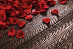 Beautiful bright red rose petals on wooden background. Happy valentines day oliday sales concept. Romantic happy valentines day greeting card / women`s day Stock Photo