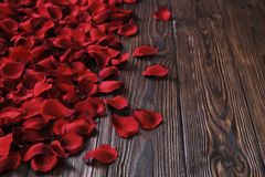 Beautiful bright red rose petals on wooden background. Happy valentines day oliday sales concept. Romantic happy valentines day greeting card / women`s day Royalty Free Stock Photos