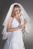 Romantic happy young bride Stock Images