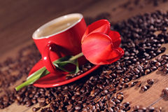 Romantic hot coffee red tulips and coffee beans on the background. Romantic hot coffee red tulips and coffee beans on the background Royalty Free Stock Photography