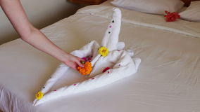 Romantic Hotel Room with Swan Towels. White towel on the bed in a hotel room in the shape of a heart or a swan with flowers and petals stock video