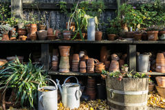Romantic idyllic plant table in the garden with old retro flower pot pots, tools and plants Stock Image