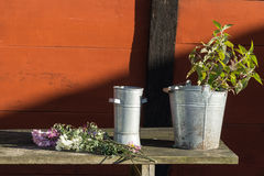 Romantic idyllic plant table in the garden with old retro flower pot pots, tools and plants Stock Photo