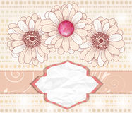 Romantic invitation card with big daisies Stock Images