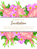 Romantic invitation Stock Images
