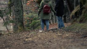 Unidentified Couple Admiring The View Of Forest. Romantic Journey - Unidentified Couple In Love Walks Holding By Hands In Warm Clothes In The Autumn Picturesque stock video footage