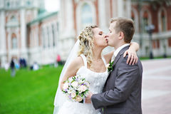 Romantic kiss. Of bride and groom Royalty Free Stock Images