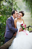 Romantic kiss bride and groom. Romantic kiss happy bride and groom on wedding walk Stock Photography