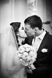 Romantic kiss bride and groom Stock Images