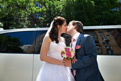 Romantic kiss of bride and groom Stock Images