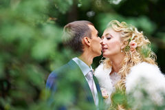 Romantic kiss bride and groom. Through the foliage on wedding walk Stock Photos