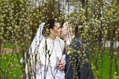 Romantic kiss bride and groom in park Stock Image