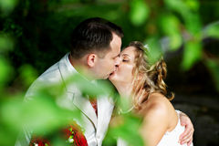 Romantic kiss bride and groom on wedding walk. Romantic kiss happy bride and groom on grass on wedding walk Royalty Free Stock Image