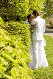 Romantic kiss bride and groom on wedding walk Stock Photos