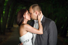 Romantic kiss in dark park Stock Image