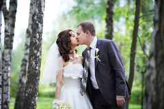 Romantic kiss groom and happy bride. Kiss groom and happy bride in wedding walk Stock Photography