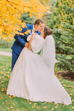 Romantic kiss of newly married couple under tree with yellow leaves in autumn park Stock Photography