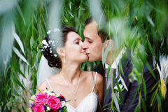 Romantic kiss on wedding walk. Romantic kiss bride and groom on wedding walk Royalty Free Stock Photo