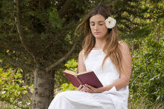 Romantic lady reading  a book sitting Stock Image