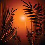 Romantic landscape with fern leave Royalty Free Stock Images
