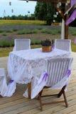 Romantic lavender field Stock Images