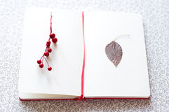 Romantic letter with berries and leaf Royalty Free Stock Photos