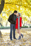 Romantic love in autumn Stock Images