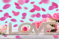 Romantic love background with falling rose petals Stock Photos