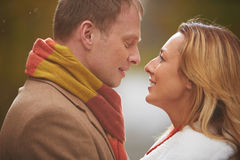 Romantic love Royalty Free Stock Image