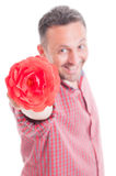 Romantic male offering flower Royalty Free Stock Image